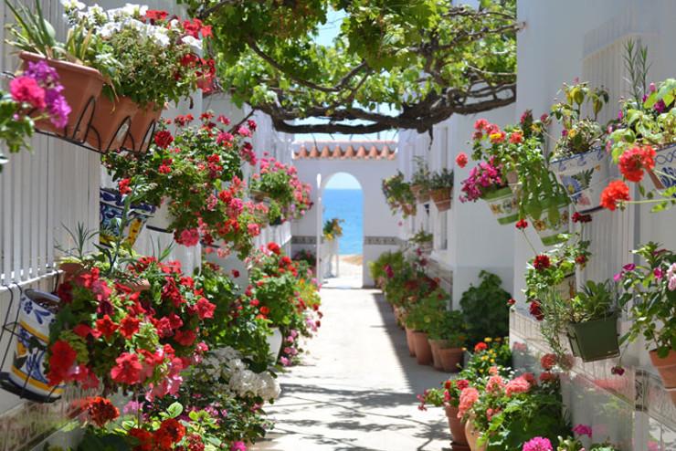Patio mediterráneo andaluz
